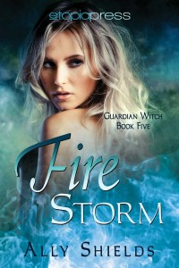Cover of Fire Storm by Ally Shields
